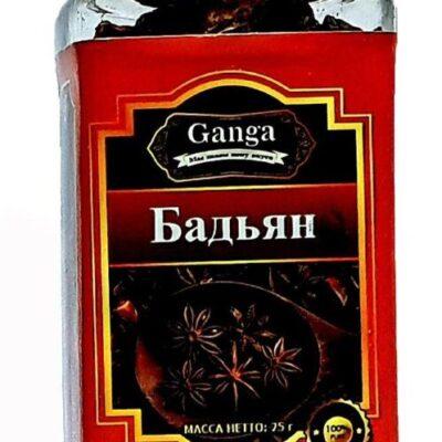 """Бадьян """"Ganga Foods"""" Банка 140 мл."""